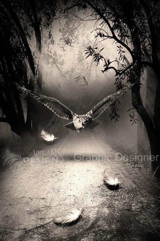 owl  book template annrs.jpg