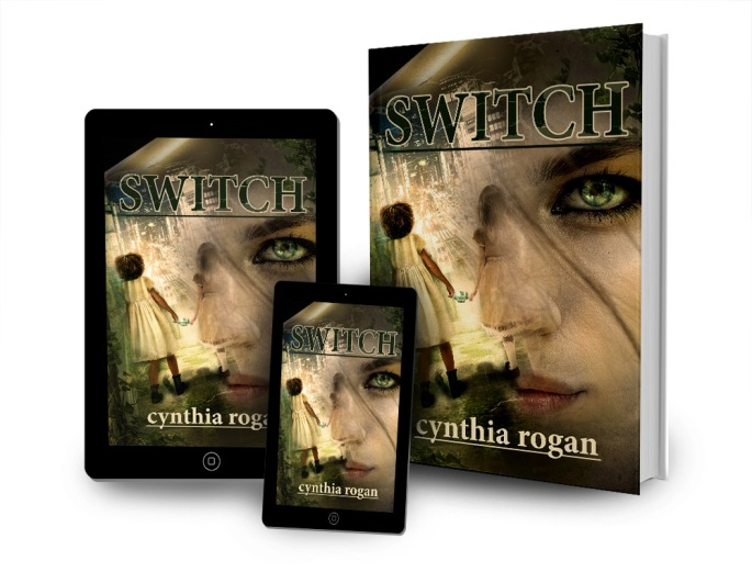 Switch book cover.jpg
